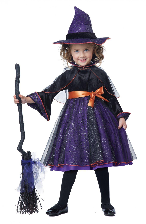 Witch Hocus Pocus Toddler Costume Size: Medium #00171