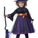 Witch Hocus Pocus Toddler Costume Size: Medium #00171