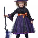 Witch Hocus Pocus Toddler Costume Size: Large #00171