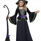 Classic Witch Child Costume Size: X-Large #00500
