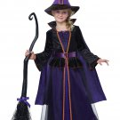Hocus Pocus Witch Child Costume Size: Medium #00499