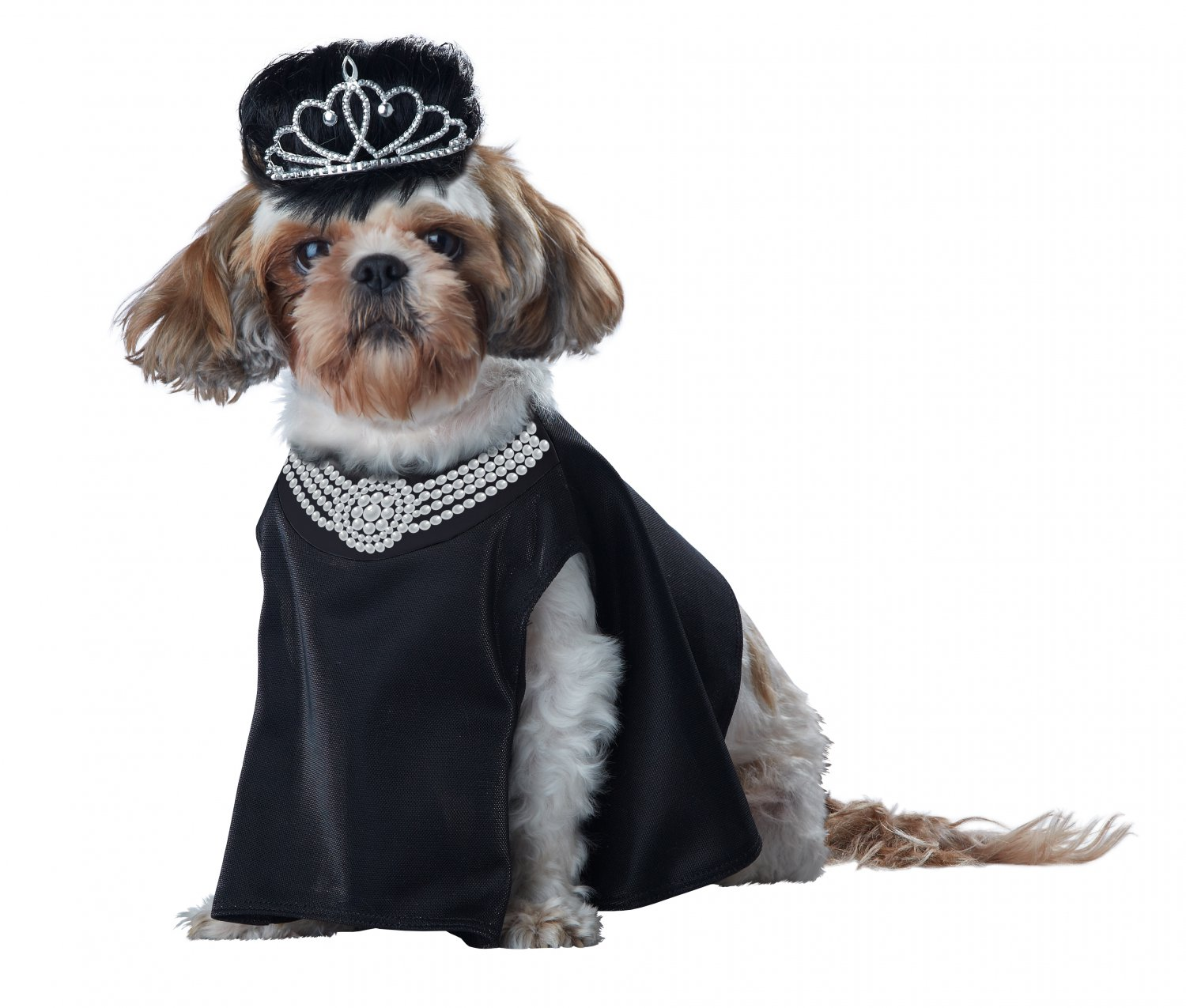 Barkfest at Sniffany's Pet Dog Costume Size: X-Small #20136