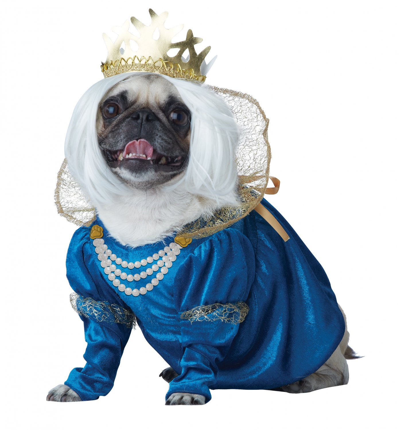 Renaissance Queen of Bones Pet Dog Costume Size: Small #20139