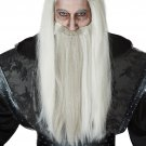 #70900 Dark Wizard The Lord of the Rings Game of Thrones Costume Accessory  Wig and Beard
