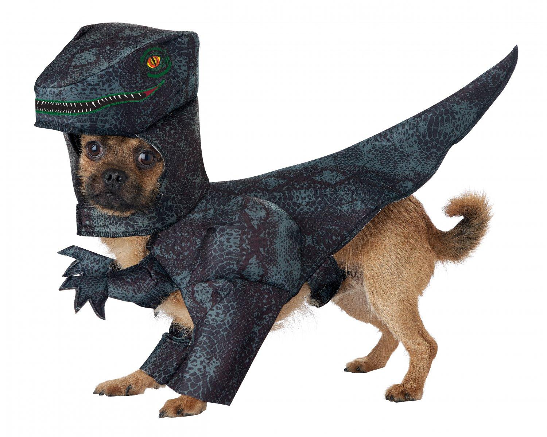 Size: X-Small #20169 Tyrannosaurus Pupasaurus Rex Dinosaur Pet Dog Costume