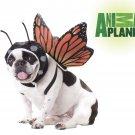 Size: Medium #20101 Fairy Butterfly Dog Costume