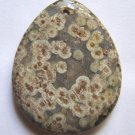 Turtle Jasper 46x36 Teardrop Pendant Bead
