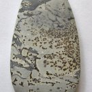 Nature's Paintbrush Jasper 58x31 Freeform Pendant Bead