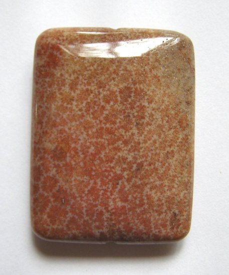 Fossil Coral 40x30 Rectangle Pendant Bead