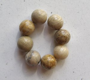 8 Fossil Coral 12mm Round Beads