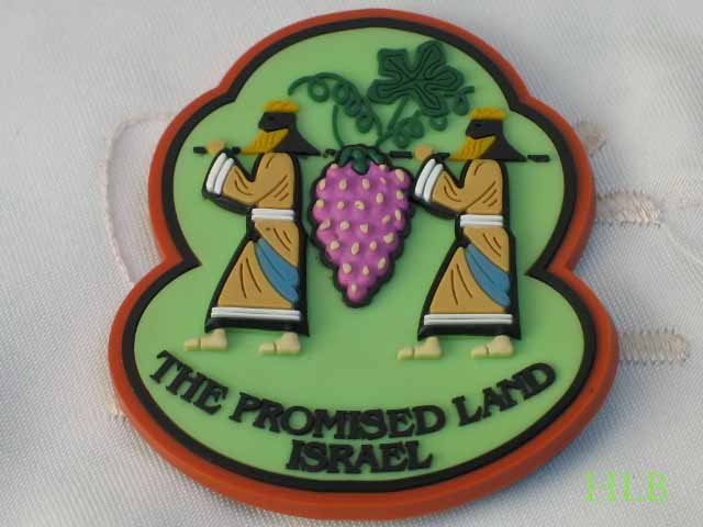 Israel 3D Magnet The Promised Land