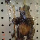 Primitive Bear Lodge Ornament - Staff with Owl and Pine Cone