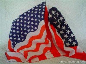 Americana Patriotic Bandannas or Napkins (8)