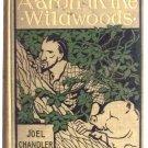 Joel Chandler Harris Book Aaron in the Wildwoods U.S. First Edition 1897