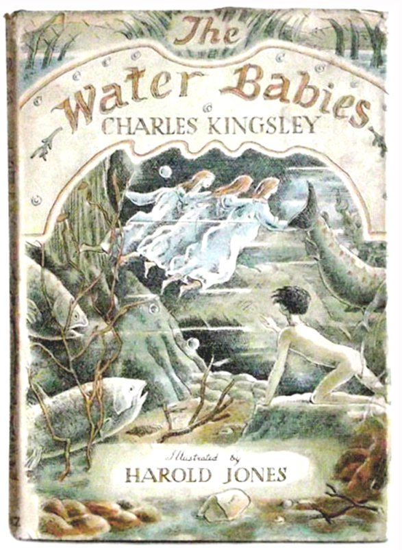 Charles Kingsley Book The Water Babies Ill Harold Jones First Edition 1961