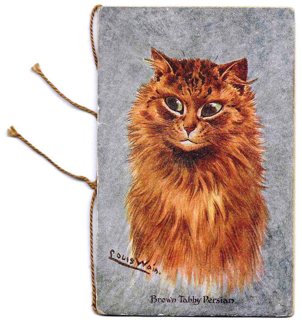 Louis Wain Cat Large Persian Cat Illustration Christmas Card 1917