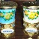 Plastic Sovenir Cup (Salt & Pepper) Shaker Set - old