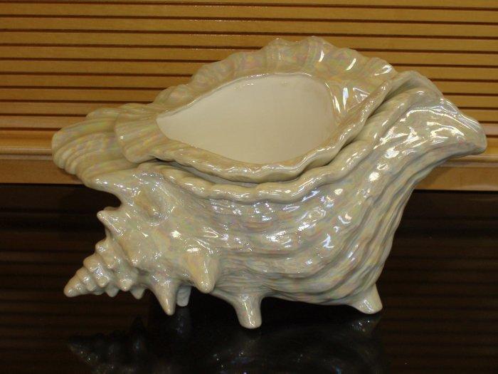 Large Ceramic Conch Shell African Violet Pot Pots