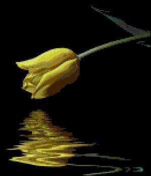 Reflective Yellow Tulips Counted Cross Stitch Pattern