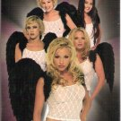 No Angels.Com: The Web Gets Wicked (VHS) **Brand New**