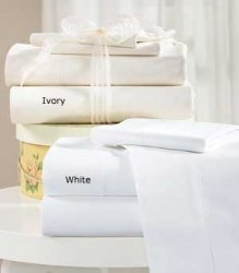 600TC Pillow Pair 100% Egyptian Cotton Ivory Color