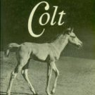 Wright, Dare. Look At A Colt