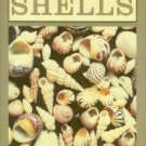Dance, Peter S., editor. The Collector's Encyclopedia Of Shells