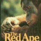 Schwartz, Jeffrey H. The Red Ape: Orang-Utans and Human Origins