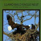 Llano Bald Eagle Nest: A Three Year Pictorial History Of Three Adults And The Eaglets They Raised
