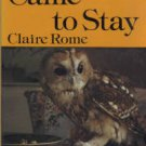Rome, Claire. An Owl Came To Stay