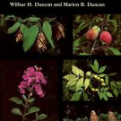 Duncan, Wilbur H, and Marion B.. Trees Of The Southeastern United States