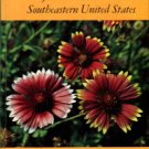 Duncan, Wilbur H, and Foote, Leonard E. Wildflowers Of The Southeastern United States