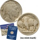 1917 Buffalo Nickel - Philadelphia Mint