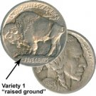 "1913 ""Raised Ground"" Buffalo Nickel (Type I:1st Yr) Unc"