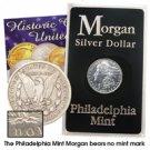 1894 Morgan Dollar - Circulated