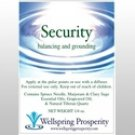 Essential Oil Blend Security Wellspring Prosperity
