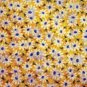 Field of Daisies 1.5 inch