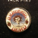 GRATEFUL DEAD TACK PIN skull & roses button NEW!