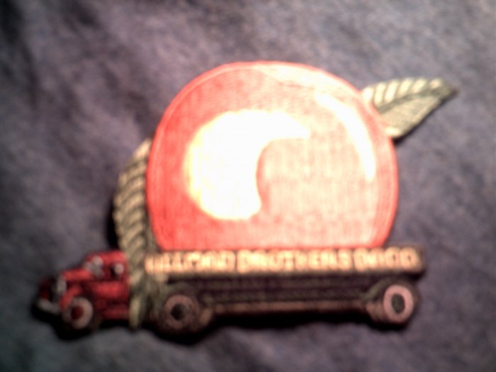 THE ALLMAN BROTHERS iron-on PATCH Eat a Peach NEW