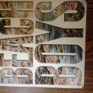 BEACH BOYS ALBUM FLAT logo vintage 1985 poster PROMO SALE