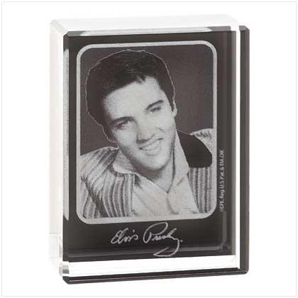39789 Elvis Picbrick