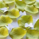 1000 WILLOW LIGHT GREEN SILK ROSE PETALS WEDDING DECORATION FLOWER FAVOR RP002
