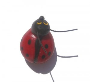 Red Lady Bug-ALL MAGNET ORDERS HAVE A 25 PIECE MINIMUM (ASSORTED OR SAME)