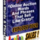 1079 Auction Words & Phrases that Sell Like Crazy