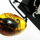 Real Black Scorpion inside Amber Necklace