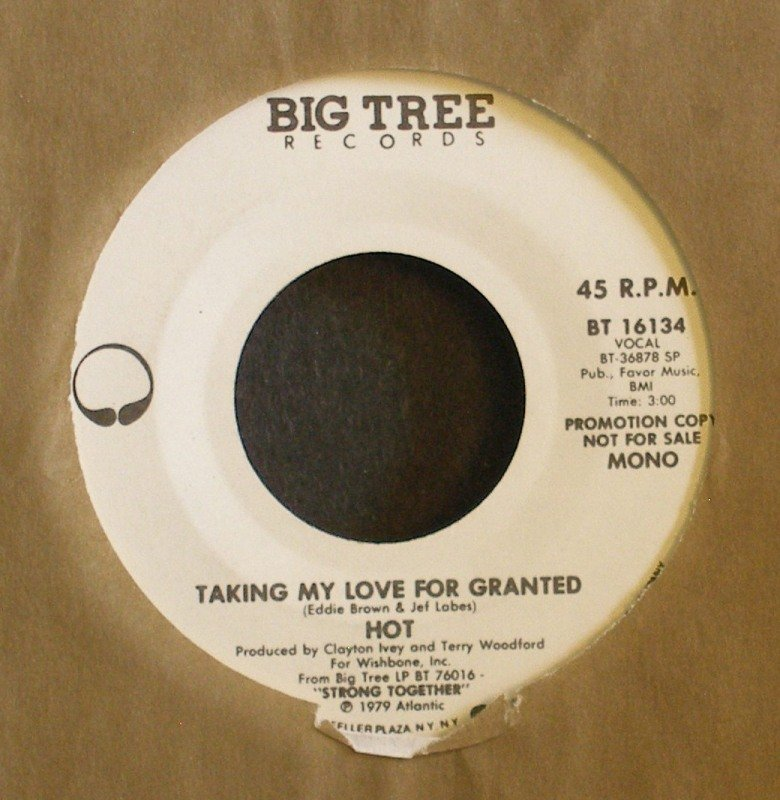 HOT~Taking My Love for Granted~ Big Tree BT 16134 1979, PROMO 45