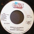 JOHNNY ANTHONY~Penny's Rainbow / Wanderer~ CSA 175 PROMO 45