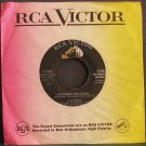 LOU MONTE~Remember This Gumba / Guarda Che Luna~ RCA Victor 47-7689 1960, 45