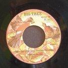 PARKER MCGEE~A Little Love and Understanding / Got That Feeling~ Big Tree BT 16091 1977, 45