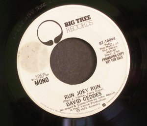 DAVID GEDDES~Run Joey Run~ Big Tree BT-16044 1975, PROMO 45